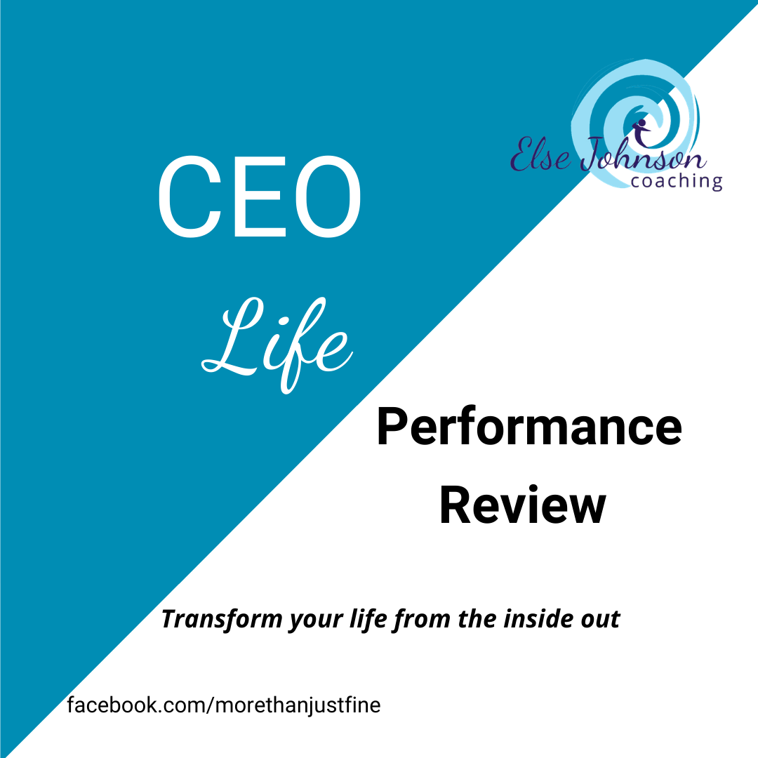 CEO Life Performance review logo