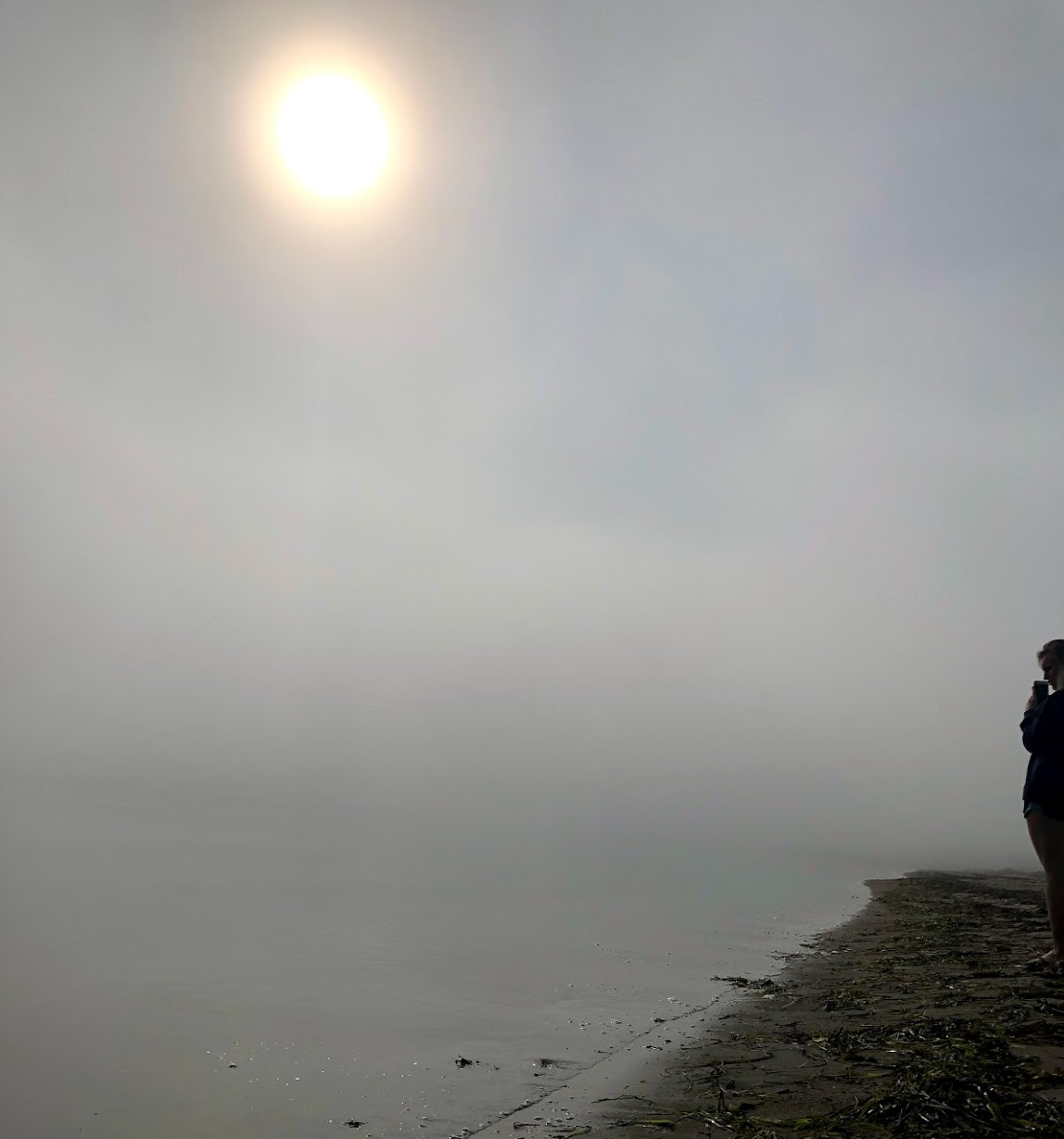 Girl standing in the mist by the shore